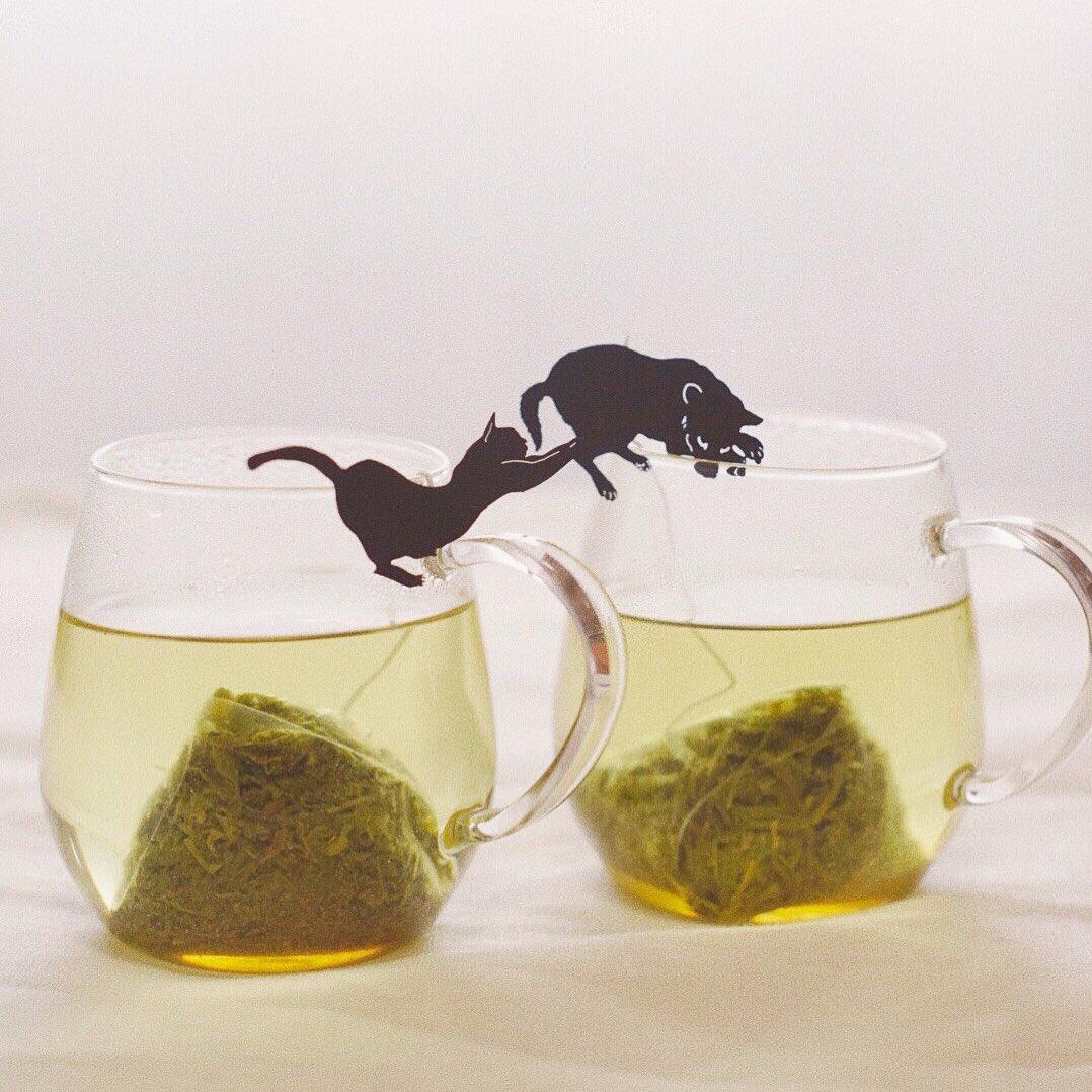 いぬ茶とねこ茶