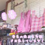 ピンクや桃色を集めました♪